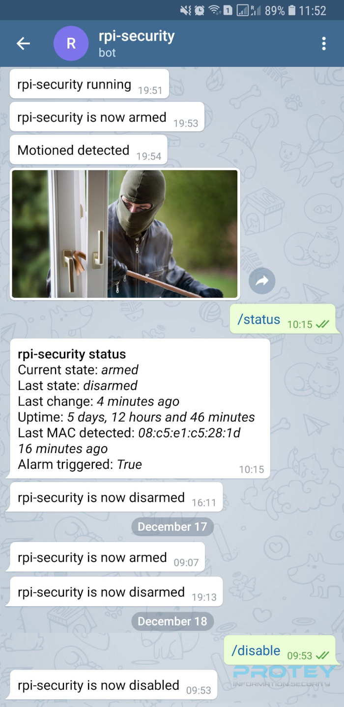 rpi-security-3.png